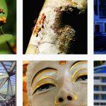 Instagram-Bilder auf instagram astrobecker